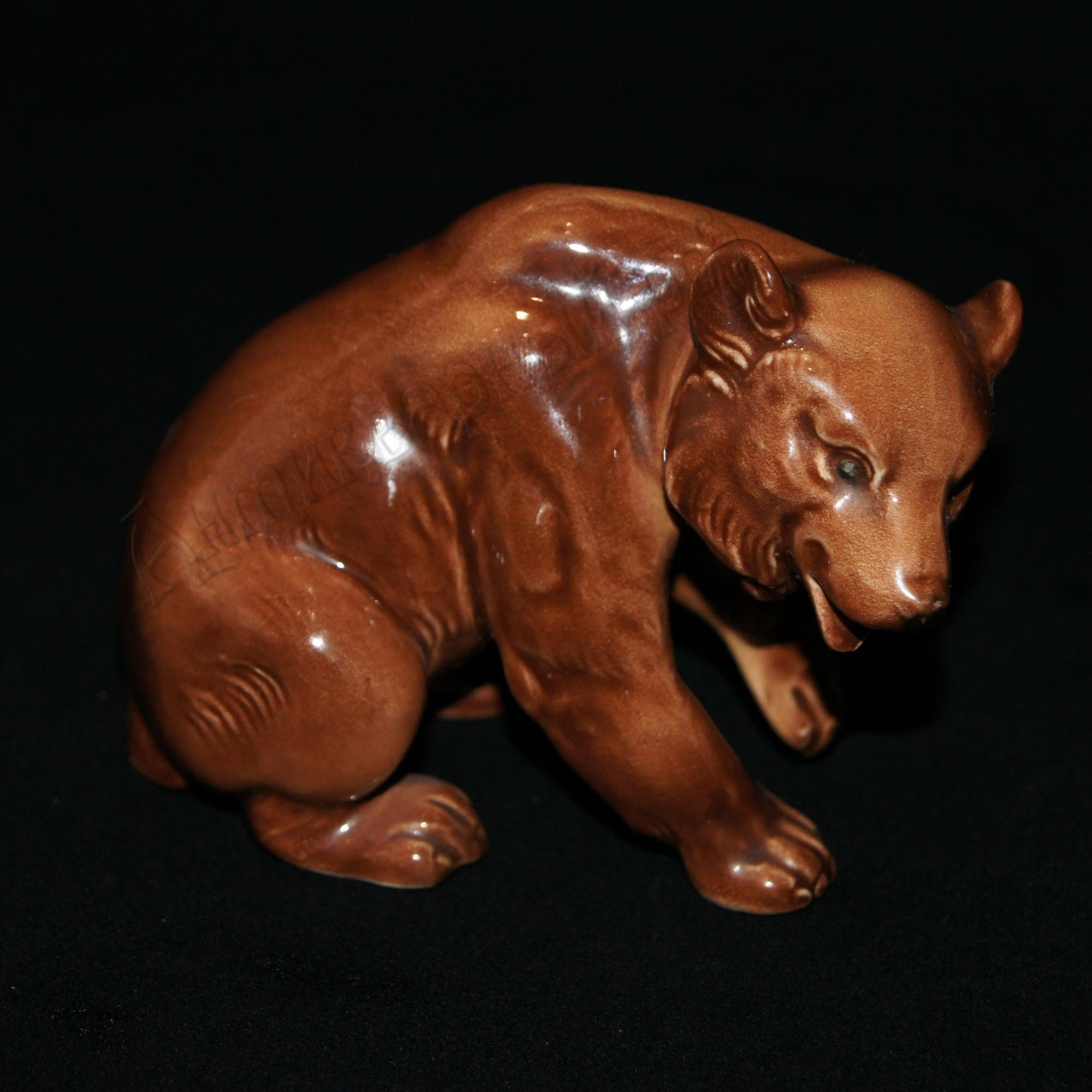 медведь бурый. германия